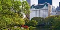¥1,168 -- 5.8折 纽约Plaza酒店单人50分钟经典按摩/亮肤面部护理 赠香槟