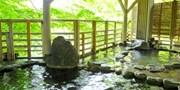 ¥18,800 -- 渓流の絶景宿『水上館』 露天風呂付客室×上州牛・アワビ含む2食×飲み放題