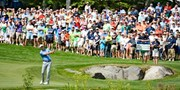 $60 -- PGA Tour FedExCup Playoffs w/Ruth's Chris Lunch