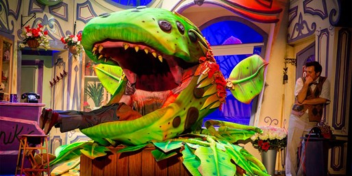 £17.65 & up -- 'Little Shop of Horrors' in Belfast, Save 41%