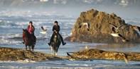 $39 -- Ride Horseback along Mendocino Coast to the Beach