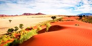 $3159pp -- Namibia: 10-Night Safari-Lodge Tour, Save $790