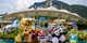 ¥5,980 -- 寒假亲子纯玩之旅 香港5日独家行程!迪士尼/海底餐厅/海洋公园幕后 升级5星凯悦+龙虾餐
