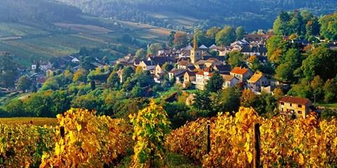 Dès 35€ -- Hôtels en Bourgogne pour découvrir les vins, -50%