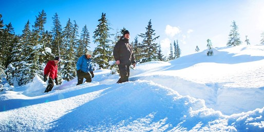 $55 -- Guided Whistler Mountaintop Snowshoeing, Reg. $89