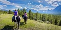 $28 -- Spring Horse Trek in Kananaskis, Reg. $46