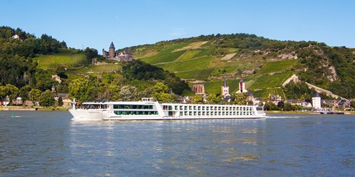 £1195pp -- Rhine Cruise w/Flights, Meals & Tours