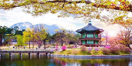 ¥2,989起 -- 春意盎然亲子游!五星大韩航空 首尔5天自由行 市政厅位置佳 5 星酒店 亲子/闺蜜