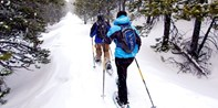 Marble Canyon or Paint Pots Snowshoeing for 2, $40 Off