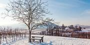 99 € -- Südliche Weinstraße: Wintertage mit Dinner, -48%