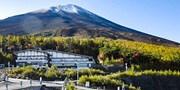 $709 起 -- 乘纜車俯瞰富士山絕景+五合目 即摘櫻桃任食 東京出發一天團