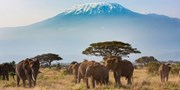 $3995 & up -- Kenya 7-Night Safari w/Air from across Canada