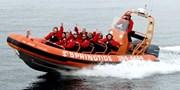 $59 -- High-Speed Wildlife Excursion in Zodiac Boat