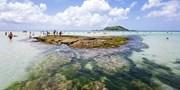 $58 & up -- Cozy Jeju Island Stay near Beach inc Breakfast