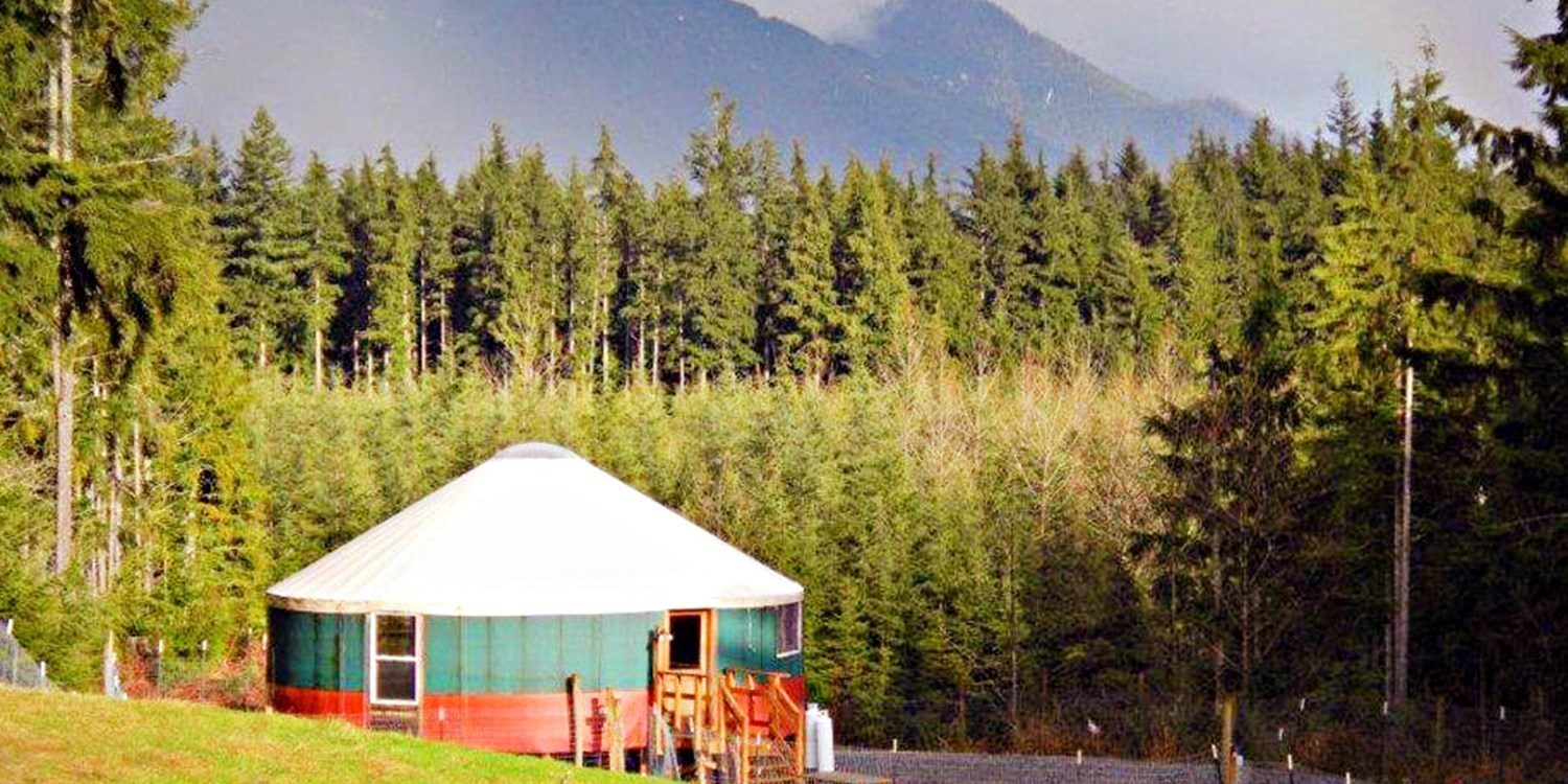 2-Night Alpaca Ranch: Furnished Yurt Camping Experience