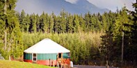 2-Night Alpaca Ranch: Furnished Yurt Camping Experience
