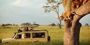 ab 1402 € -- Nairobi bis Sansibar: 11 Tage Serengeti-Safari