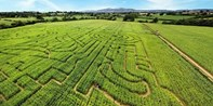 £7 -- Entry for 2 to The Great Worcester Maize Maze, 46% Off