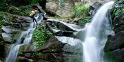 $169 -- Rainforest Canyoning on the South Coast, 50% Off