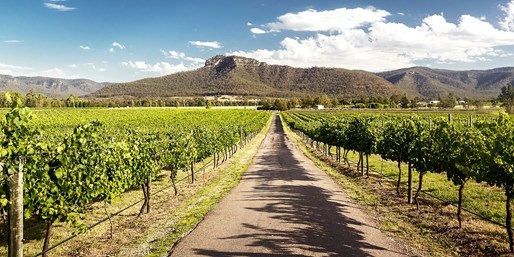 $59 -- Hunter Valley Wine Tour w/Lunch & Transfers, 59% Off