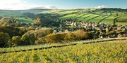 £99 -- Yorkshire Vineyard Break inc Wine & Tour, Was £185
