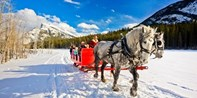 $45 -- Banff: Horse-Drawn Sleigh Ride for 2, Reg. $75