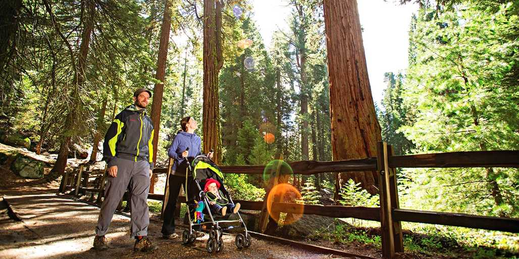 Travelzoo Deal: $99 -- Lodge in Kings Canyon National Park w/Breakfast