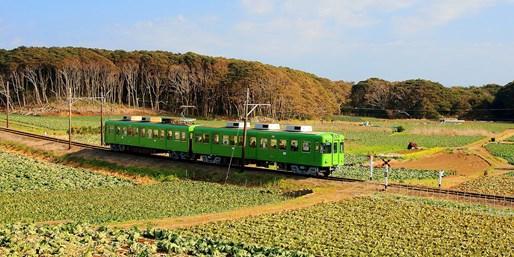 ¥5,000 -- 週末同額 列車&バスで行く房総半島日帰り旅3プラン 子供約半額