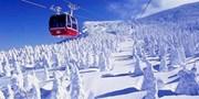 $1,440 起 -- 賞著名「蔵王樹冰」美景 季節限定 包全程交通住宿 東京出發 2 天團