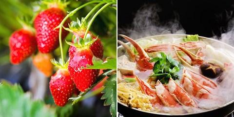$2,673 -- 東京出發一日遊,玩雪堆雪人、螃蟹和草莓吃到飽大滿足