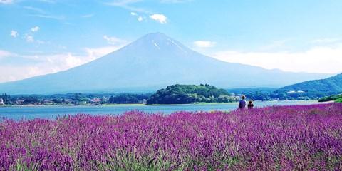 90€ -- Japon : Circuit autour du superbe lac du Mont Fuji