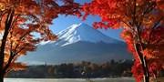 $734 起 -- 多角度眺富士山 賞河口湖紅葉 訪茅屋聚落 東京出發一天團