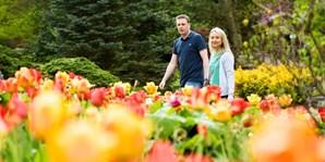 £45 -- RHS Gardens: Annual Gift Membership, Reg £55