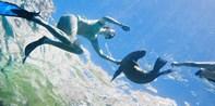 Explore the Underwater World of La Jolla: Snorkeling Tour
