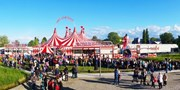 ab 10 € -- Sommerferien: Zirkus-Shows in Niedersachsen, -63%