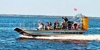 $19 -- Airboat Ride w/Gator Sightings & Souvenir Photo