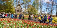 $1799 -- Europe: 5-Country Vacation from Montreal, Save $350