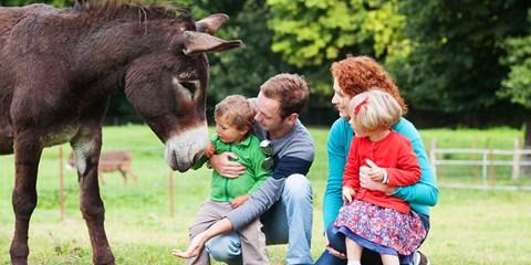 Dès 264€ -- Picardie: Week-end nature & activités en famille
