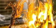 ¥498 -- 海鲜和牛通吃!180°江景餐厅橘钬双人餐 法国生蚝+澳洲谷饲400天和牛 更有周末早午餐可选