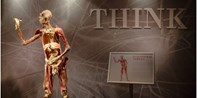 $19 -- 'REAL BODIES' on Exhibit at Bally's, Reg. $28