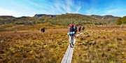 $1480 -- 5-Day Tasmania Wilderness Walk, Save $370