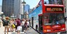 Top-Rated Bus Tour: 24-Hour Hop-On Hop-Off Pass, 25% Off
