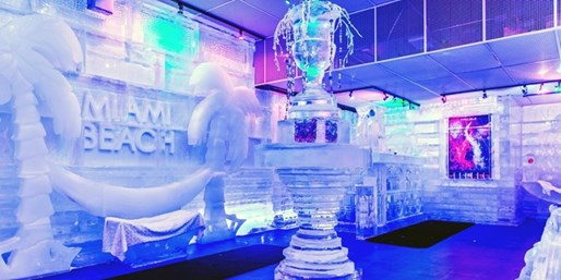 Miami's First Ice Bar: Entry & Premium Drinks