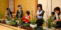 ¥310 -- 东京草月流华道90分钟日式插花体验课程 感受日本典雅花艺美学
