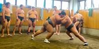 ¥478起 – 东京相扑力士晨练观赏游 走进相扑的世界 3人以上参加最实惠