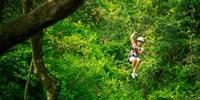 ¥688 -- 斐济雨林飞索体验 午餐+安全设备+雨林探索+瀑布游泳 南迪/迪那桡接送