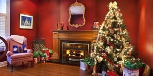 29 € -- Weihnachtsbaum nach Hause liefern lassen, -17%