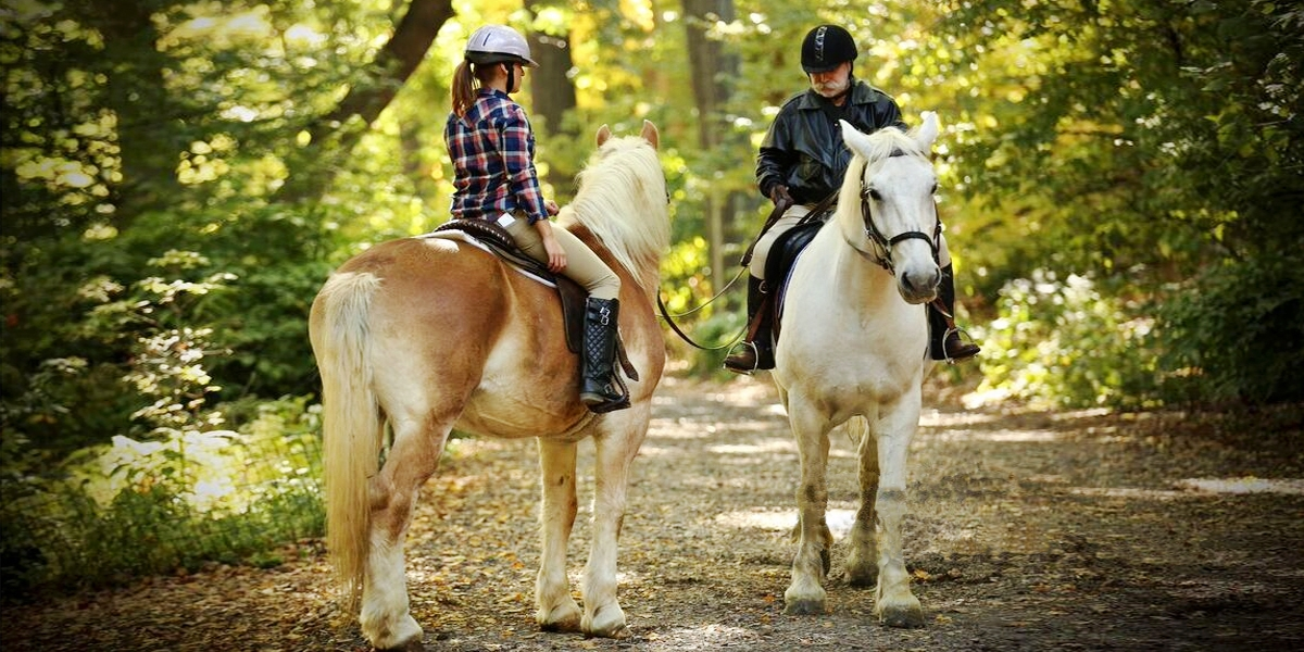Explore Central Park with a 60-Minute Guided Horseback Ride