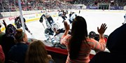 $16 -- Charlotte Checkers: Half Off Rinkside Seats