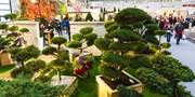 7 € -- Design- und Gartenmesse mit riesiger BBQ-Welt, -46%